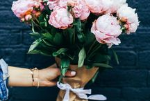   Pretty Flowers + Blooms   / Pretty blooms, peonies, pink aesthetic, flowers, pink flowers, florals, pink, pretty bouquets, flower inspiration