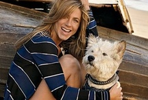 Celebs with Pets!