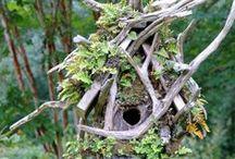 Birdhouses / by Lisa Olsen
