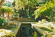 The lovely outdoors / Gardens, swimming Pools and porches