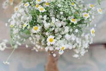 WEDDING IDEAS / by Julie Carlisle AKA Nana Peaches