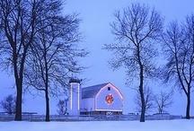 Winter Wonderland / by Kristine Dye