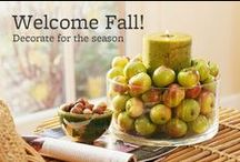 Fall / Fall decorations and inspiration