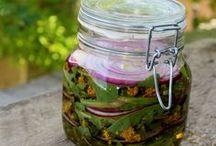 Carol @ Fresh Bites Daily / Delightful herb-infused posts @Fresh BItes Daily