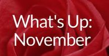 What's Up: November / Info, Ideas & Resources for All Things November. Happenings, Holidays & Events: Movember, Remembrance Day, Veterans Day, American Thanksgiving, Black Friday, Cyber Monday, International Survivor of Suicide Loss Day, Christmas Shopping