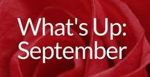 What's Up: September