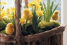 Spring ~ Easter
