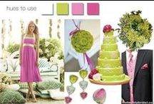 Color Themes and Schemes