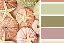 Color Schemes / by Claudia Nickolson