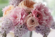 pastel wedding inspiration / by Courtney Spencer