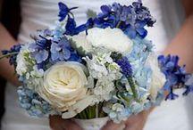 wedding ideas / by Claudia Nickolson