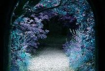 Forests, Gardens & Glens for Fairies / by ~bell the cat~