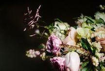 Flower Power / Flowers