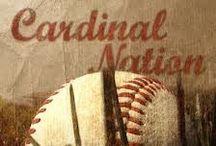 Cardinals / by Debbie Todd