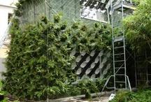 Urban Farming & Architecture / Rooftopgardens, lommeparker, parkhaver