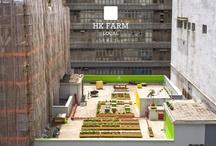 Rooftop Farms/gardens