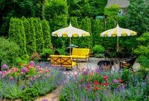 Outdoor Living / by Pamela Dueck