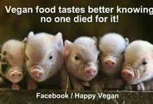 """Thou Shalt Not Kill..."" / I am vegan."