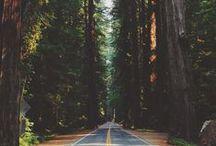 let's go get lost.