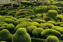 Gardens big & small