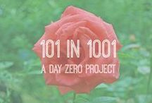 101 in 1001 - Day Zero Project / Complete 101 things you have listed in 1001 days (approx 2.75 years) - It can be a bucket list thing or a creative thing or a just because thing