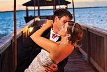 Fabulous Wedding Stuff / Fabulous Wedding Stuff / by Melissa Park