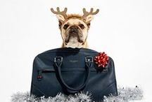 Ted's Got The Gift / From classic footwear to fun flasks, Ted's got it out of the bag this holiday season with his suave selection of stocking fillers.