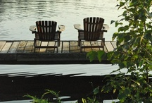 Backyards, Gardens, Pools, Patios & Porches  / by Michele Hart
