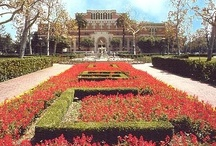 Campus SCenes / The USC campus is so beautiful. We'll share our favorite photos of campus and campus life!