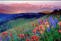 △ colorado mountains △ / travel to colorado mountains etc