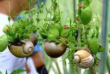 Gardening (✿◠‿◠)