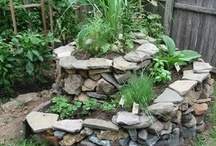Garden Inspirations / by Jacqueline