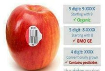 No to GMO (genetically modified organism)