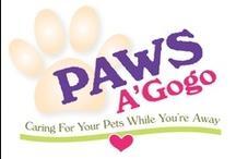 Paws A' Gogo / Identity / by Nikki Zalesak, Creative Director/Designer