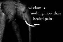 Wisdomologie / by Tante Jo(landa)