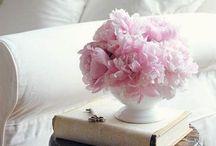 Floral beauty / by Jennifer Rogers