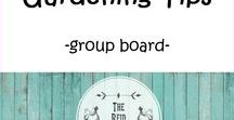 {Gardening Tips-Group Board} / Tips and tricks for starting your garden, starting seeds, growing vegetables fruit and flowers and saving seeds. RULES: 1. For each of your own pins posted, please repin 3 pins from this board. 2. Limit of 3 of your own pins per day. Feel free to pin other quality pins to this board, no limit. 3. To join, must have 500 followers, follow me, and message me thru Pinterest to request to be added. #gardening #vegetablegardening #backtoedengardening #organicgardening #gardeningtips #beginnergardener