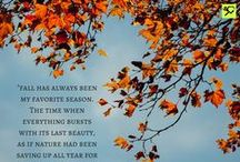 Fall Charity Miles / Enjoying the season when the world seems to catch fire . / by Charity Miles