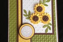 card craft / by Delphine Mondoux