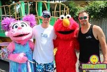 Star Sightings at Sesame Place! / by Sesame Place