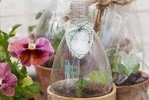 HOUSE AND GARDEN TIPS / Those home and garden how to's or fabulous tips!