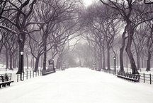 New York City Love / by Arin B. Forstenzer