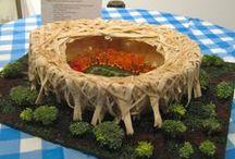 Food Stadiums / by Angie Smits