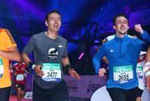 Frankfurt Marathon 2015 / running