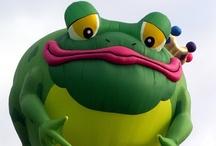 Feelin Froggie! / by Sara Biehler