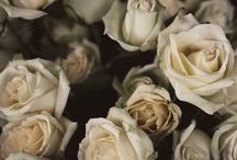 En Fleurs / by mlkc