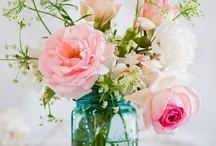 Pretty in Pink... / So thankful God made so many beautiful flowers...these are some of my favorites / by Brandi Murphy