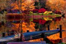Seasons: Fall / by Kathy Froerer