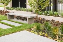 CONTEMPORARY BACKYARD / Exterior landscaping