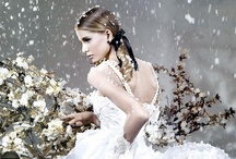 Belleza Invierno